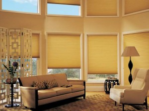 Hunter_Douglas_Duette_Architella_honeycombs_4