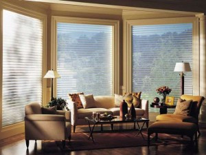 Hunter Douglas Silhouette window shadings.