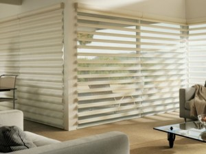 Hunter Douglas Pirouette® Window Shades