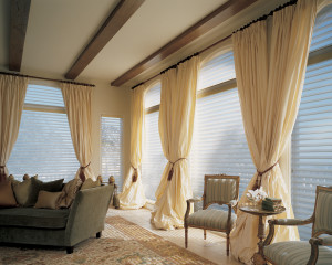 Hunter Douglas Silhouette Sheer Shadings