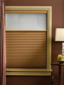 Duette®  Honeycomb Shades with Duolite™